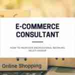 How to Maintain Professional Working Relationship with Your E-commerce Consultant